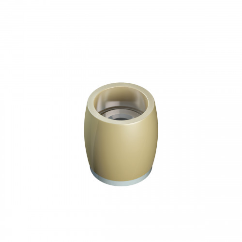 Series 250 25mm Diameter Brass Bottom Guide Roller